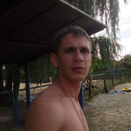 Роман, 29 лет, Владимир-Волынский