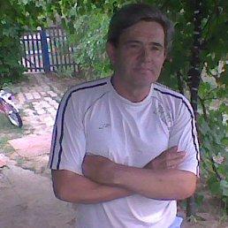 Михаил, 60 лет, Дивное