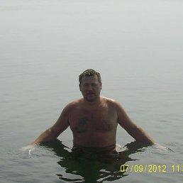дмитрий, 43 года, Борзна