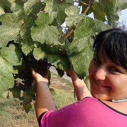 Анастасия, 29 лет, Заокский