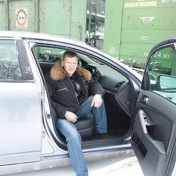 Андрей, 49 лет, Иваново