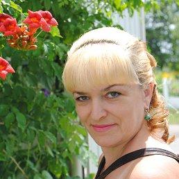 ольга, 55 лет, Борисполь