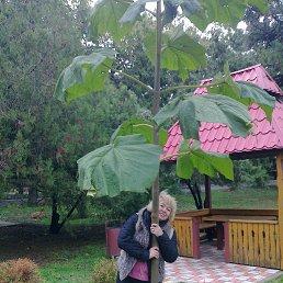 Наталия, 59 лет, Мариуполь