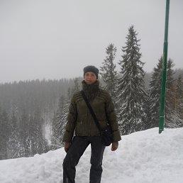 Елена, 42 года, Калининград