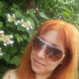 кристина, 33 года, Динская