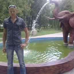 Сергей, 34 года, Христиновка