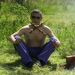 Алексей, 41 год, Тамань
