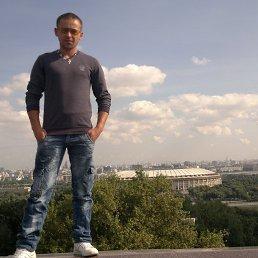 Денис, 30 лет, Почеп