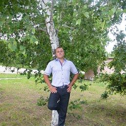 Николаша, 29 лет, Ананьев