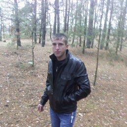 Петро, 27 лет, Любешов