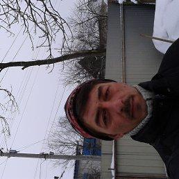 Олег, 41 год, Глухов