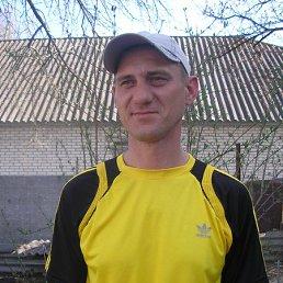 виталий, 42 года, Белополье