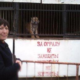 Елена, 51 год, Пролетарск