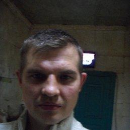 Роман Евгеньевич, 43 года, Краснодарский