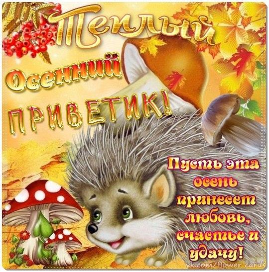 Mail ru знакомства top 100 мистер зима оренбург 5
