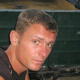 Фото Андрей, Сокиряны, 35 лет - добавлено 10 августа 2014