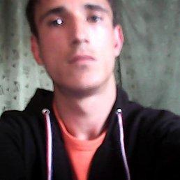 Алексей, 26 лет, Почеп
