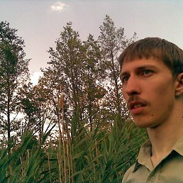 Александр, 29 лет, Ряжск