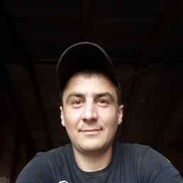 максим, 34 года, РОГАЧЁВ