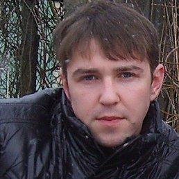 Сергей, 30 лет, РОГАЧЁВ