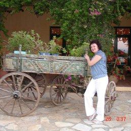 Елена, 57 лет, Электрогорск