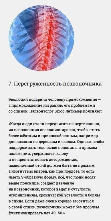 Интересные факты о нашем организме.