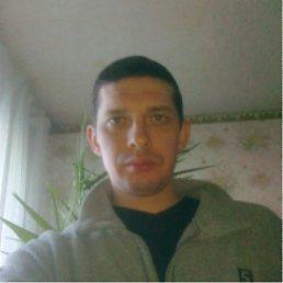 Игорь, 41 год, Першотравенск