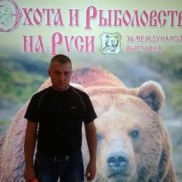 Вова, 43 года, Краснозаводск