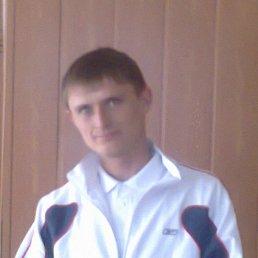 Андропулик, 26 лет, Перевальск