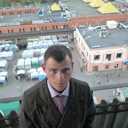 вова, 30 лет, Шаховская