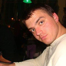 Толя, 30 лет, Владимирец