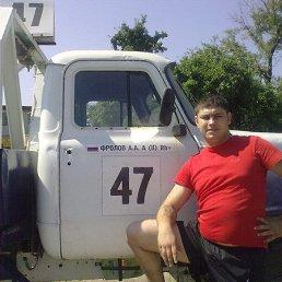 Фролов Алексей, Нижний Новгород, 35 лет