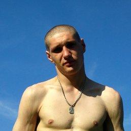 Виталий, 29 лет, Ряжск