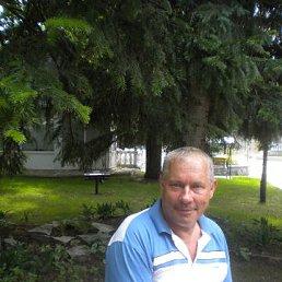 Геннадий, 61 год, Новосибирск