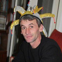 Сергей, 44 года, Медведовская