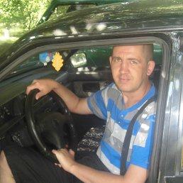 Александр, 35 лет, Золотое