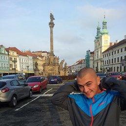 Алексей, 30 лет, Малин