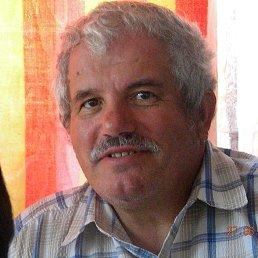 Анатолий, 64 года, Новотроицкое