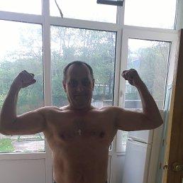 игорь, 59 лет, Шепси