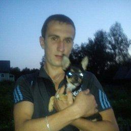 сайгак, 29 лет, Кировск