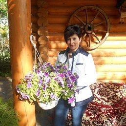 Людмила, 54 года, Васильков
