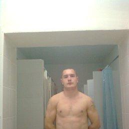 Тарас, 27 лет, Костополь