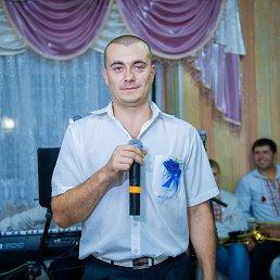 Денис, 29 лет, Сокиряны