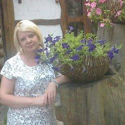 Татьяна, 42 года, Коростень