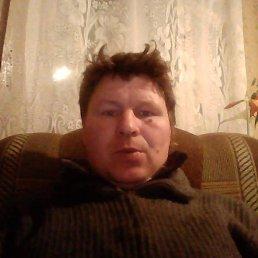 Александр, 42 года, Любытино