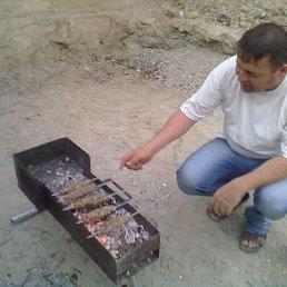 касим, 51 год, Сургут