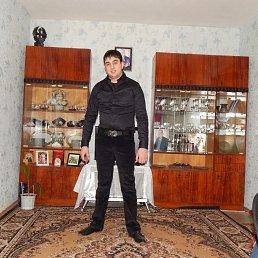 ARSEN, 26 лет, Иваново