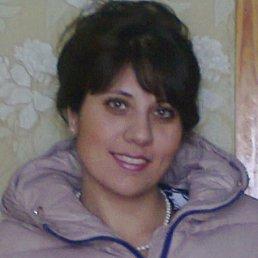 Елена, 38 лет, Волчиха