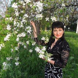 Инна, 40 лет, Верхнеднепровск