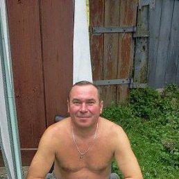 Анатолий, 54 года, Бородянка